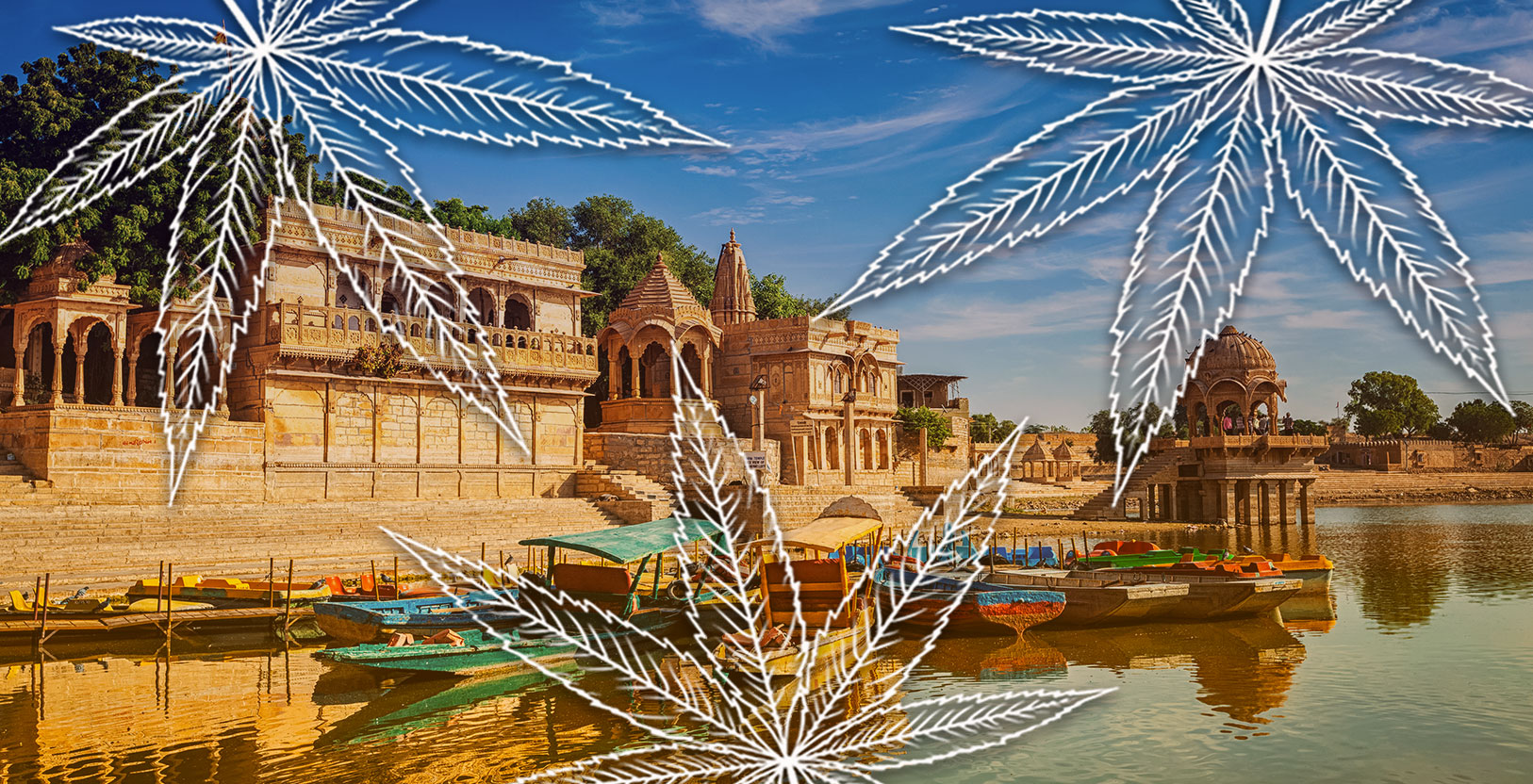 India Legalize Cannabis Hindu Kush