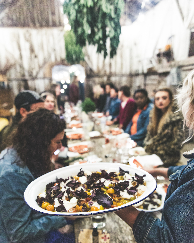 Sweetleaf Collective's Fight for Compassion Programs