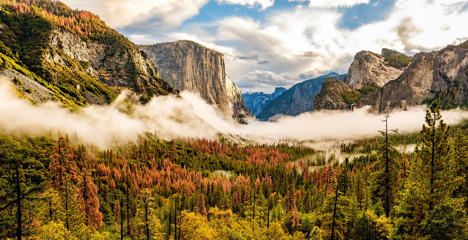 Throwback Thursday: Early Climbing Counterculture in the Yosemite Valley