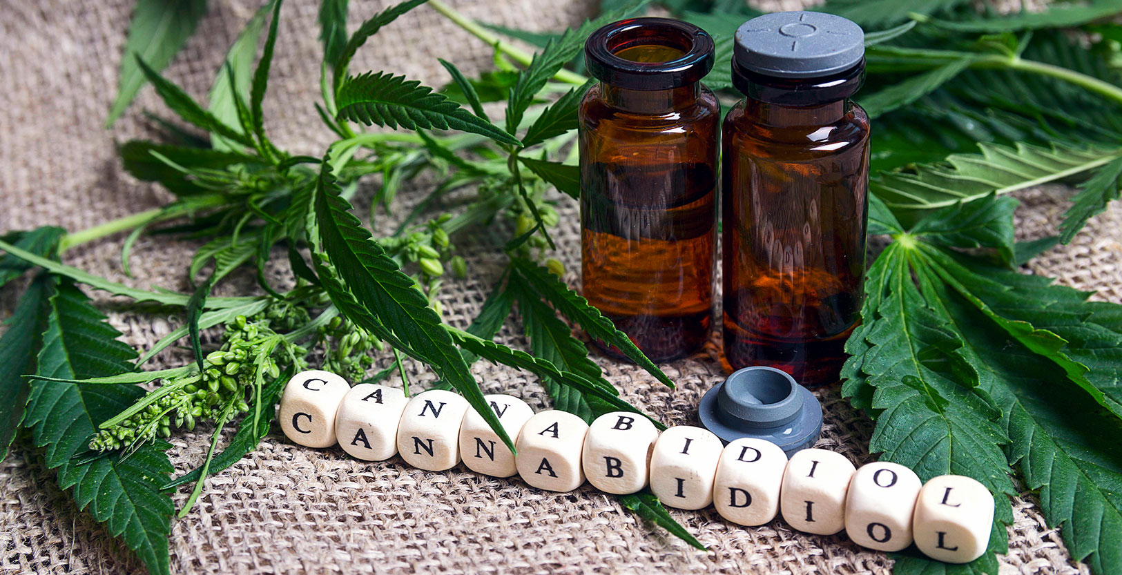 The FDA is Coming… Implications for CBD Marketing After the 2018 Farm Bill